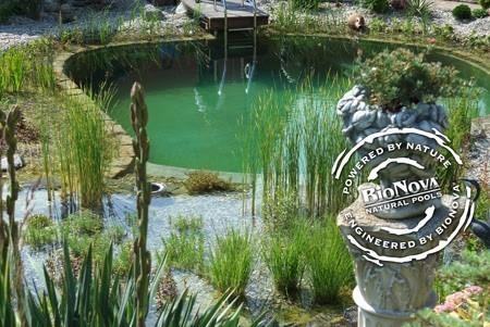 Natural Pools Webinar
