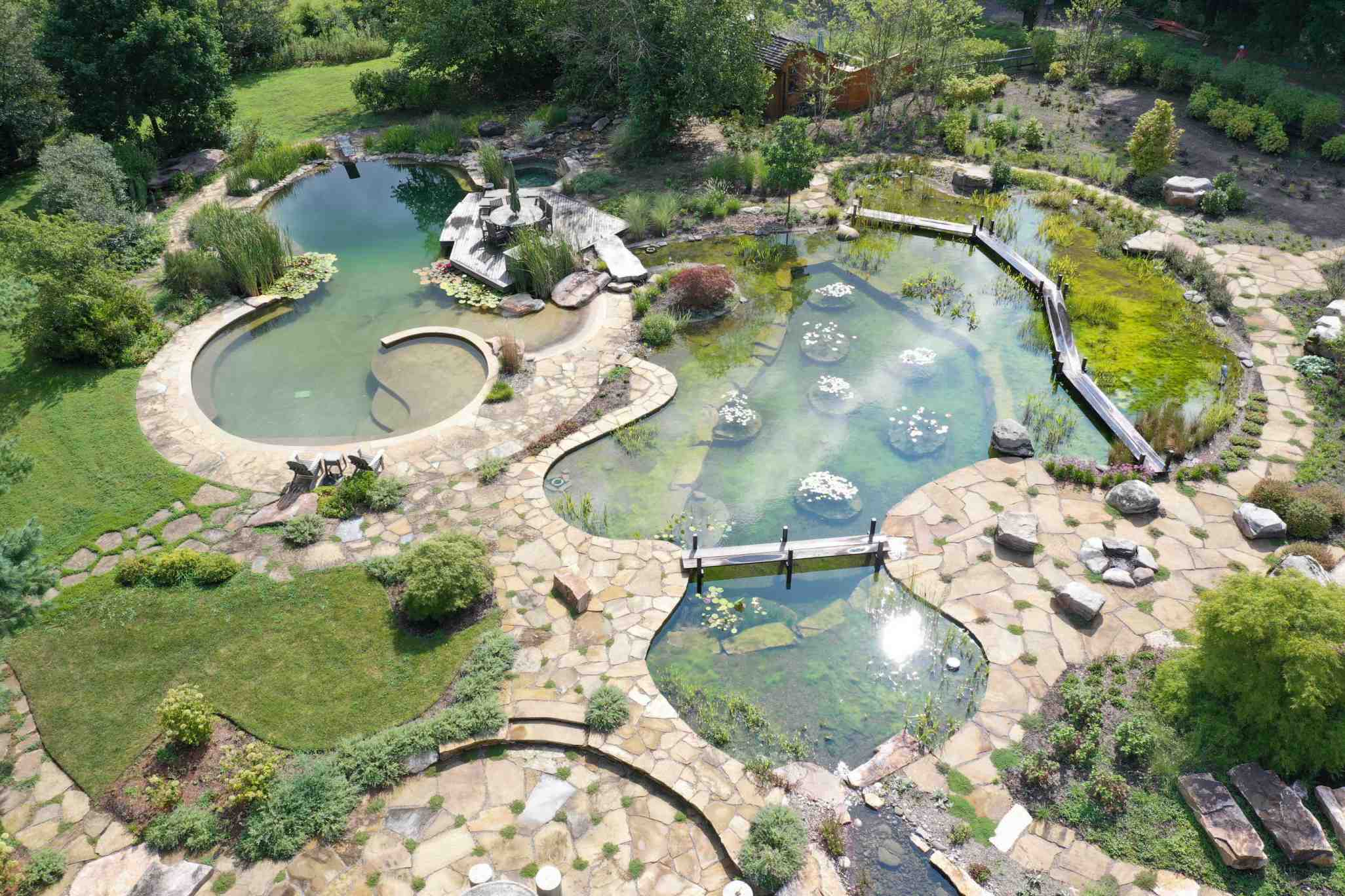 BioNova™ Natural Swimming Pools | Plants Instead of Chemicals™
