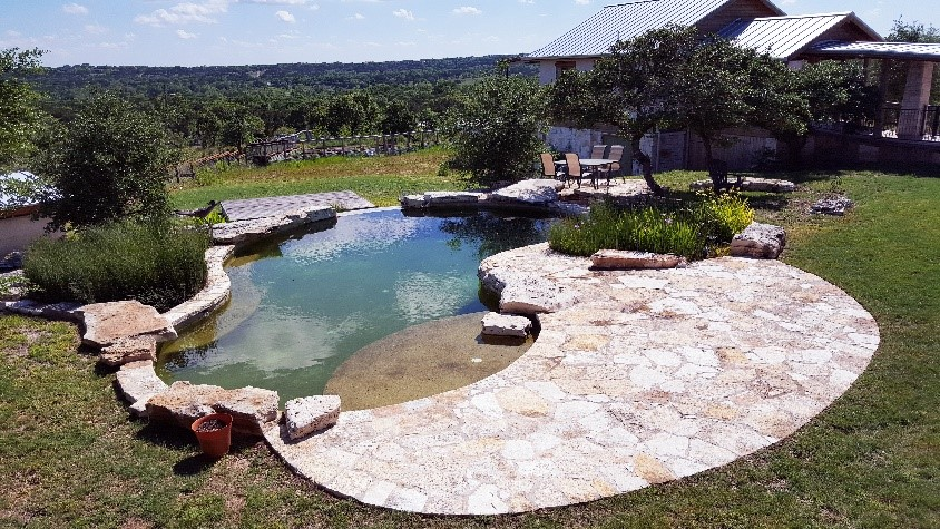 Natural Swimming Pool with Natural Purification