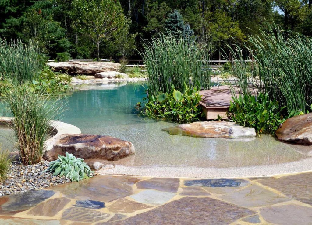A BioNova® Natural Pool installation in Princeton, NJ by Rin Robyn Pools designed in conjunction with landscape architect Brian Meneghin