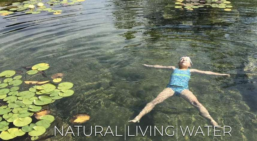 Wouldn't your children (and grandchildren) prefer to swim in a Natural Swimming Pool?